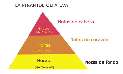 piramide_olfativa